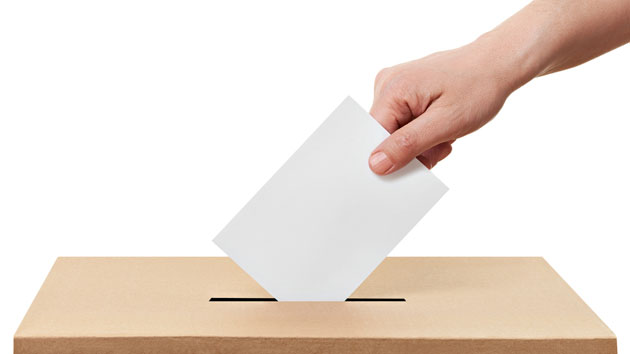 Neregulile sesizate la vot